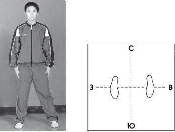 What is a complex Taijiquan